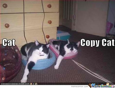Copy Cat Meme - copy cat by michaelchane meme center