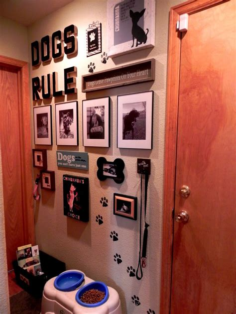 pet room ideas 25 best ideas about puppy room on rooms
