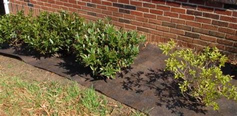 How To Landscape Your Front Yard How To Install Landscape Fabric And Plastic Today S