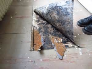 pvc boden kleber entfernen pvc mit schwarzem kleber und pappe dielen entfernen wie
