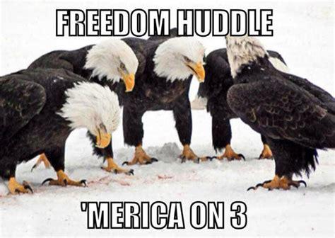 Freedom Eagle Meme - mindy project memes memes