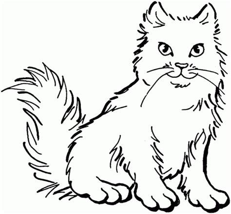 fluffy kitten coloring page redirecting to http www sheknows com parenting slideshow