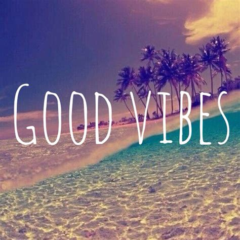 Vibes Quotes Summer Vibes Quotes Quotesgram
