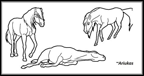 spirit and rain coloring pages coloring pages