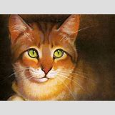 Warriors Cats Crookedstar   1024 x 768 jpeg 74kB
