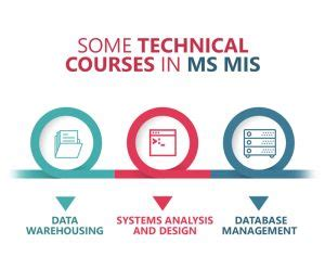 Ms In Management Information Systems Vs Mba In Business by Mis Vs Data Science What S The Right Choice Greedge