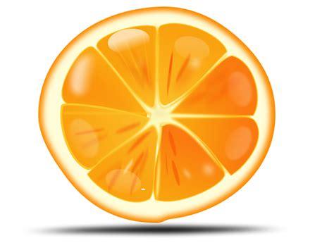 orange clipart orange slice clipart clipart panda free clipart images