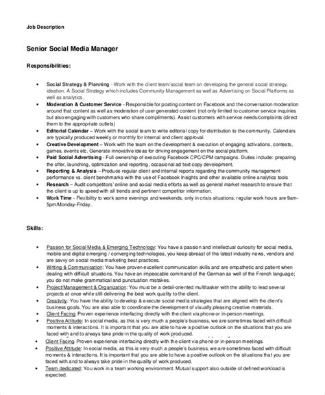 digital media buyer description media planner