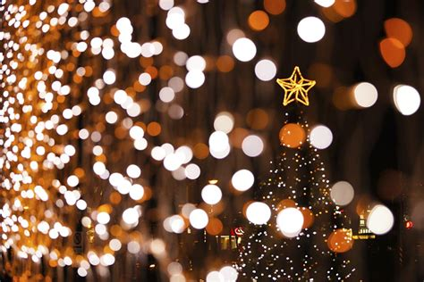university of kentucky christmas lights kentucky holiday lights