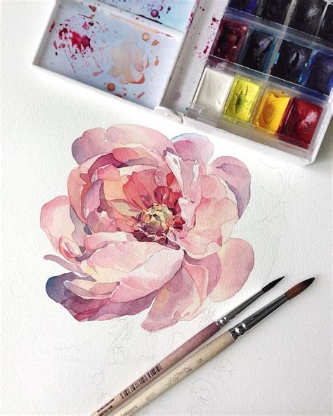 tutorial watercolor tattoo best 25 peony drawing ideas on pinterest peony peony