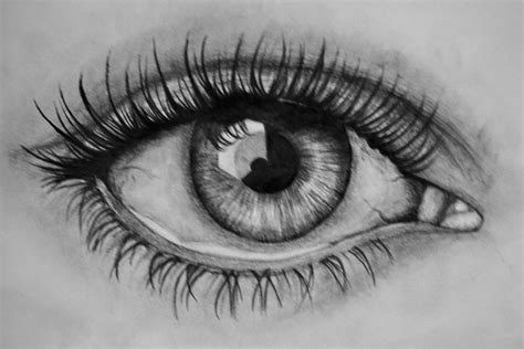 A Drawing Of An Eye by Sketches And Simple Drawings D P C