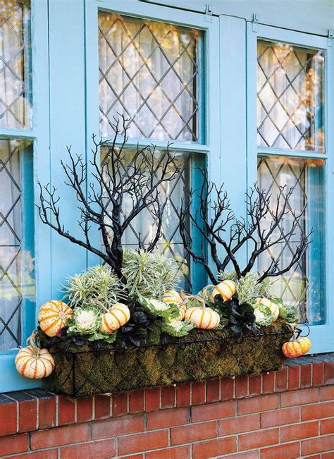 fabulous fall container ideas  garden glove