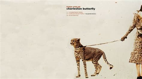 parov stelar chambermaid swing album a collection of parov stelar album covers made into