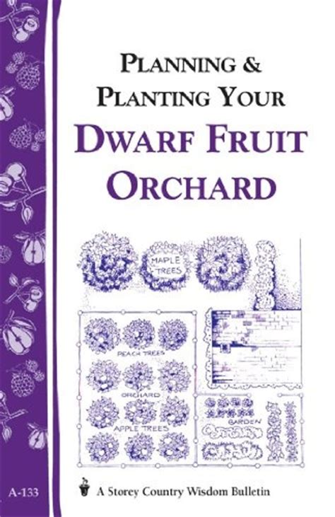 layout design of an orchard planning planting your dwarf fruit orchard