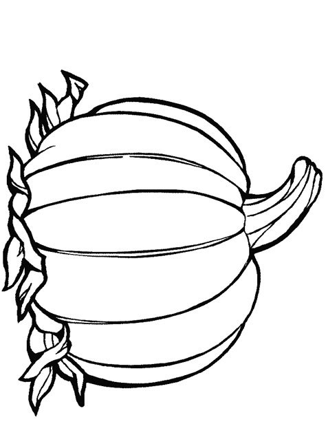 simple pumpkin coloring pages pumpkin outline printable clipart panda free clipart