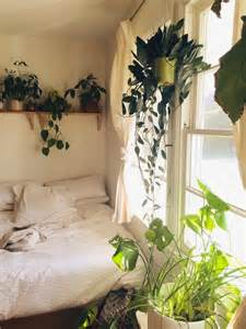 yaya plants in the bedroom - Plants In Bedroom