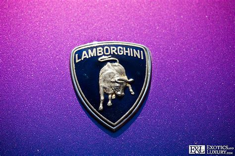 lamborghini badge lamborghini logo emblem badge image by www