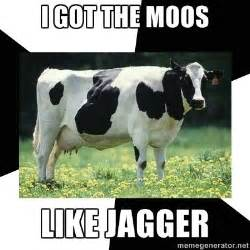 Cow Meme - judge reprimands jury for laughing at defendant accused of