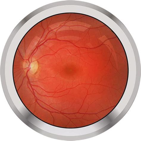 eyes   ai nature biomedical engineering