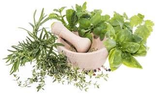 Image gallery herbal