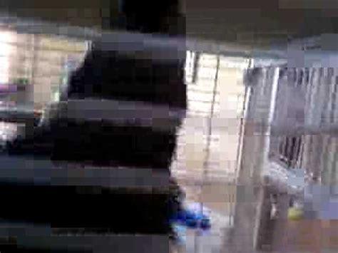 mothman caught on tape youtube
