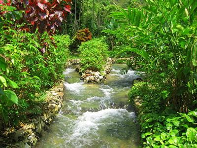 Kingston Beautiful Streams jamaica pictures memorable pictures from jamaica