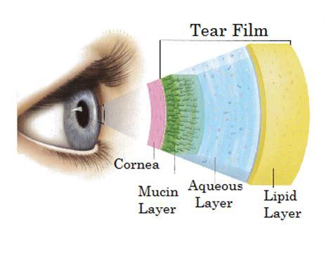 carolina eye center's blog
