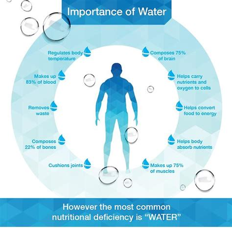 hydration importance the importance of hydration part 28 images preventing
