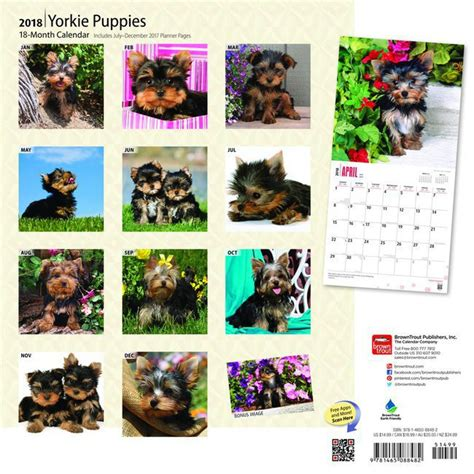 Calendrier Chien 2018 Calendrier 2018 Terrier Chiot