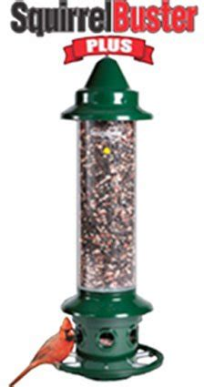 the squirrel buster bird feeder bye bye squirrels