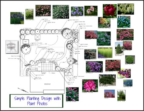 Landscape Design Software Slopes Ground Cover Perennial For Colorful Foliage And Flowers