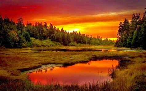 english sunset spectacular scenery pinterest summer meadow sunset stunning scenery pinterest