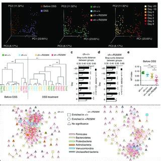 the gut microbiota of the nlrp3 r258w mice is affected by