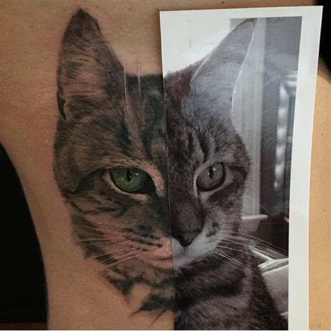 cat memorial tattoo my newest cat portrait compliments of dustin