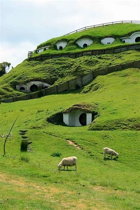 new zealand hobbit houses hobbit houses in new zealand take me there pinterest