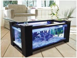 How to Make Fish Aquarium at Home   Step by Step Procedure