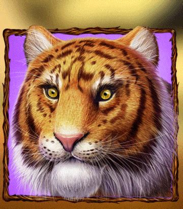 wild cats  slot game  sale cats themed slots  purchase