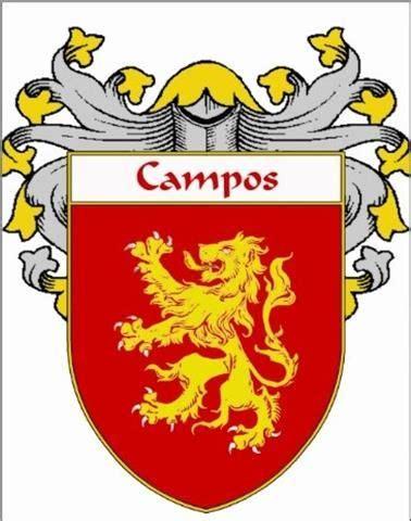 familia carvallo wwwgenealogcl 233 best her 193 ldica bras 195 o de armas portugal images on