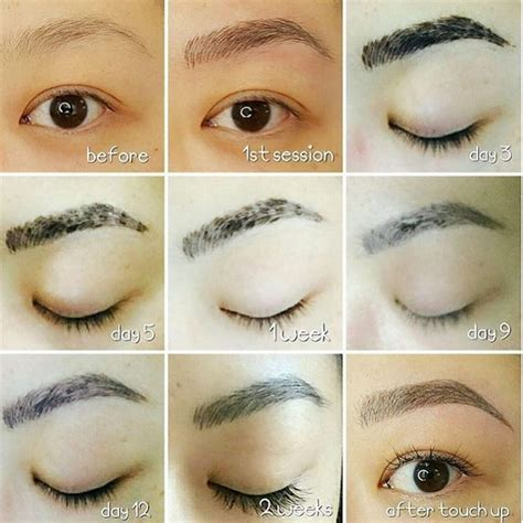 tattooed eyebrows healing process 10 best images about microblading on semi