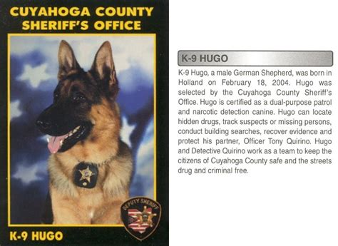 Cuyahoga County Criminal Search K9 Unit Cuyahoga County Sheriff S Office