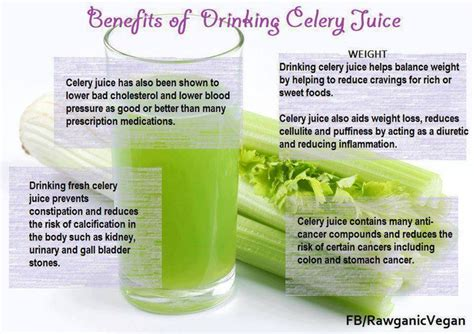 Celery Detox Benefits by 46 Best Images About Health On Celery Juice