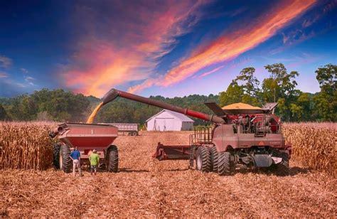 cassetto previdenziale aziende agricole contributi per la manodoprea agricola l inps non li