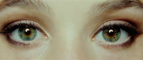 the eye is the l of the lenses and reflections quot i origins quot and the history of the