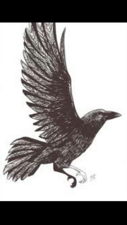 raven wing tattoo top wings spread images for tattoos