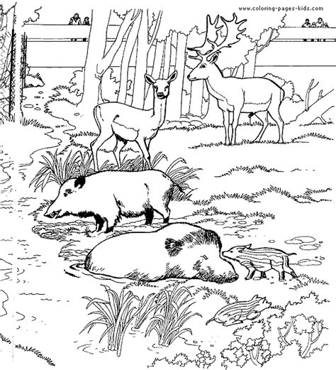 zoo coloring pages for adults deer and warthogs coloring page