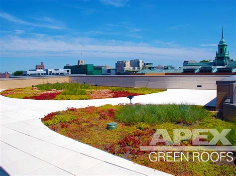 Simmons College Mba by Greenroofs Projects Simmons College School Of Management