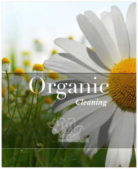 organic rug cleaning nyc organic carpet cleaning nyc organic carpet cleaners in nyc mrgreen