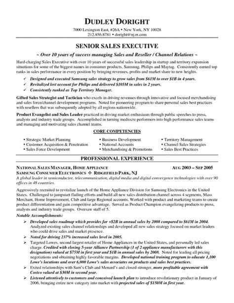 channel sales resume exle resume exles