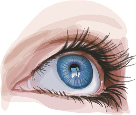eye on design different design vector free vector in encapsulated