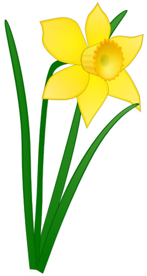 free printable easter flowers easter flower clipart clipart suggest